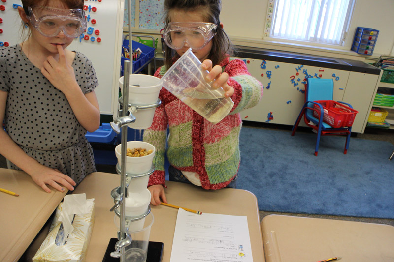 Grade 1 students performing water filtration experiment during STEM class.